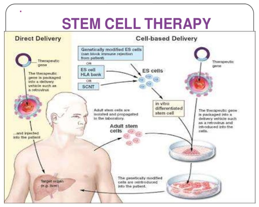 Stem Cell Therapy Blogs