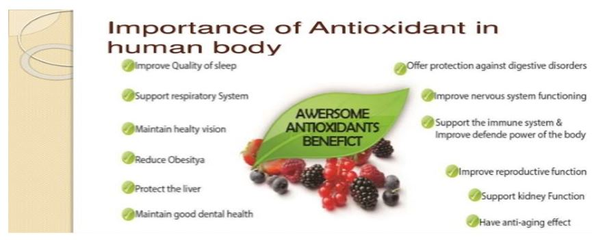 Role Of Antioxidants In Our Foods
