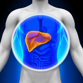 Liver & Important Liver Function Tests
